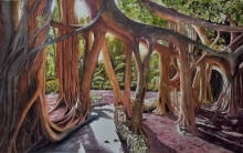 banyan-forest-tam_s