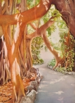 wc-1400_08_11-banyan-in-the-afternoon_s