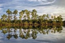 Pine Glades Lake 1_GRAUER (1500x1000)